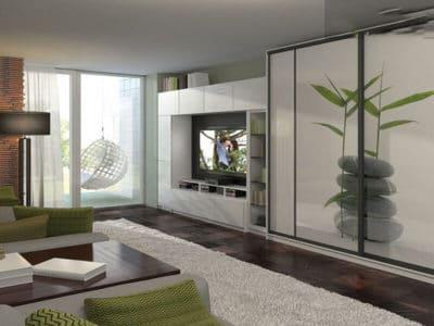 Шкаф-Купе в гостинную Фотопечать+Стенка под ТВ